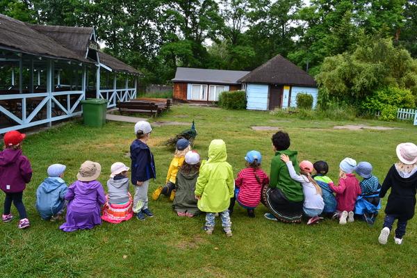 przedszkole montessori zielona szkoła
